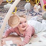 Baby Spieldecke mit Spielbogen für Baby • Die beste Krabbeldecke & Erlebnisdecke für Mädchen und Junge • Grau/Braun mit Tiermotiv • Einstellbare Höhe • Klappbar • Schadstofffrei •...